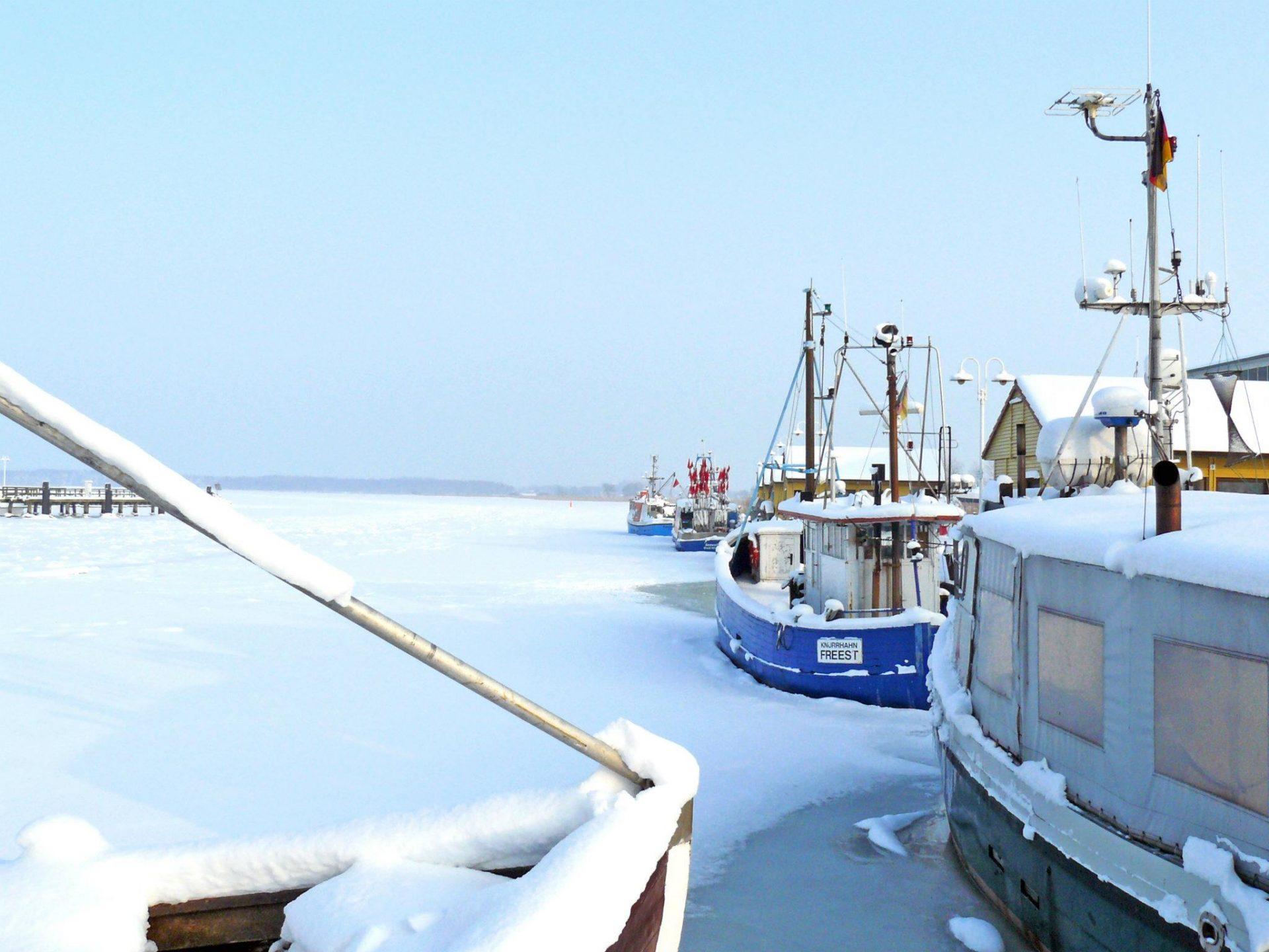 Freester Fischereihafen im Winter